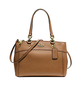 COACH Mini Brooke Carryall Satchel