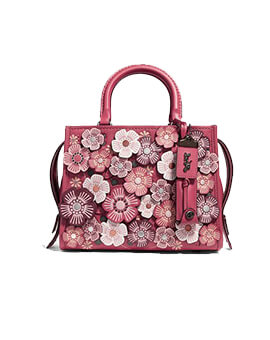 COACH X Keith Haring Rogue 25: Tea Rose