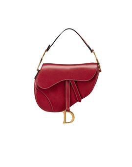 DIOR Mini Saddle in Red
