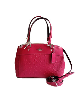COACH Mini Signature Brooke